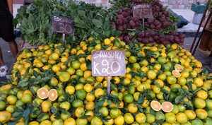 display of citrus fruits and vegetables at feria, Montevideo, Uruguay
