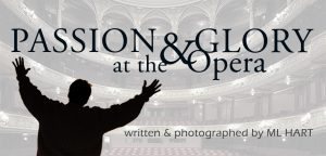 idea for the tenor book cover, Passion & Glory at the Opera